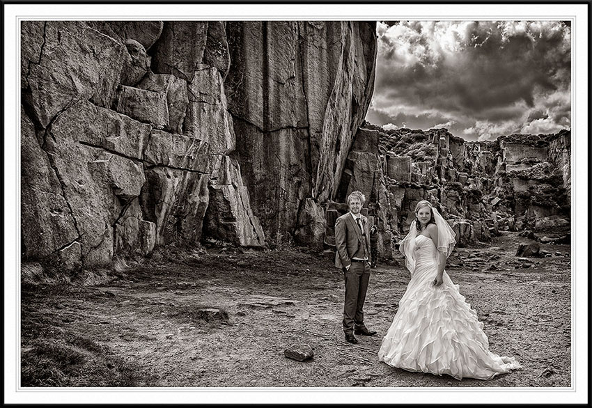 Cow and Calf Wedding Photography